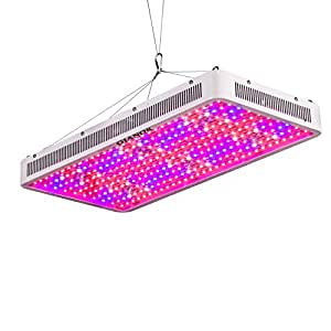 3000W Led Grow Light, Gianor Full Spectrum Double Chips Led Light Grow with UV/IR for Greenhouse Plant Growing/Flowering