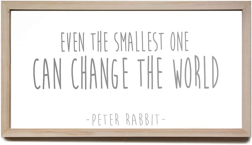 Wood Framed Funny Sign, Nursery Wall Decor, Even The Smallest One Can Change The World, Peter Rabbit Nursery Sign, Farmhouse Wall Art, Framed Wood Signs, Home Decor Wall Art, 8×12 Inch