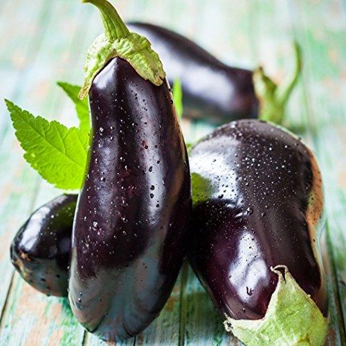 David's Garden Seeds Eggplant Black Beauty SL2470 (Black) 50 Non-GMO, Heirloom Seeds