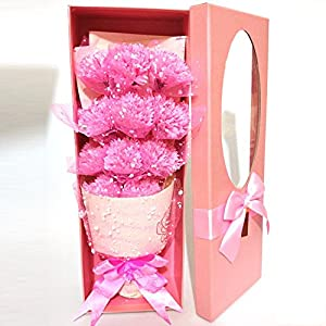 Abbie Home 11Pcs Carnations Soap Flower Bouquet Artificial Flower Box Gift for Mother's Day 9