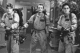 Bill Murray, Dan Aykroyd and Harold Ramis in action as Ghostbusters! 24x36 Poster