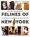 Book cover from Felines of New York: A Glimpse Into the Lives of New Yorks Feline Inhabitantsby Jim Tews
