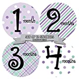 Monthly Baby Stickers by Months In Motion | 12 Month Milestone Sticker for Newborn Babies (Style 001)