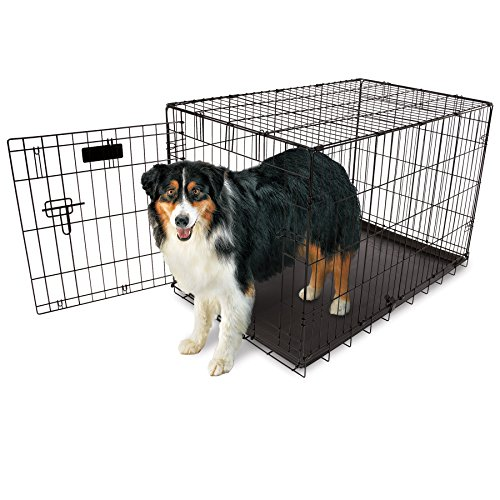 Aspen Pet Home Training Wire Crate, Black - 34.6