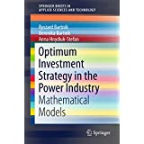 Optimum Investment Strategy in the Power Industry: Mathematical Models (SpringerBriefs in Applied Sciences and Technology)