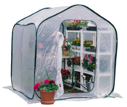 Flower House FHSP300 SpringHouse Greenhouse (Flowerhouse Portable Greenhouse)