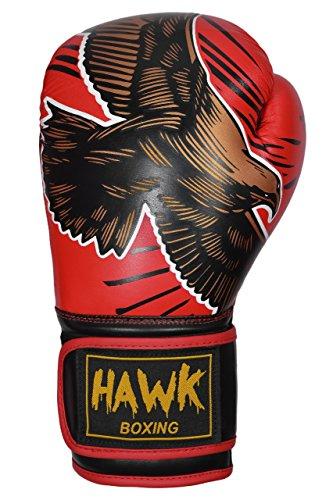 Hawk Premium Muay Thai Style GEL Boxing Gloves (Red, 14 oz)