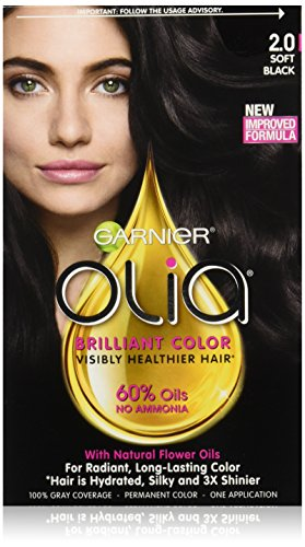 Garnier Olia Oil Powered Permanent Hair Color, 1.0 Black ...