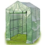 Green House 2-Tier 8-Shelves Greenhouse Portable Mini Walk In Outdoor