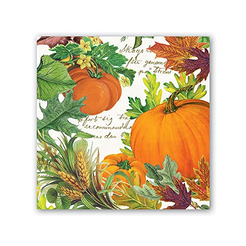 (Michel Design Works NAPL281 20-Count 3-Ply Paper Luncheon Napkins, Pumpkin Melody)