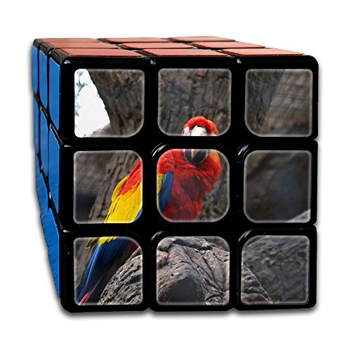 AVABAODAN Tired Parrot Rubik's Cube Custom 3x3x3 Magic Square Puzzles Game Portable Toys-Anti Stress For Anti-anxiety Adults Kids by AVABAODAN