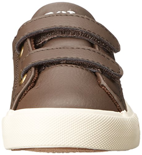اسعار Polo Ralph Lauren Kids Scholar EZ Fashion Sneaker (Toddler/Little Kid)