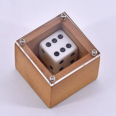 SUMAG Badlands Bob Dice Trick Dot Number Change Dice Magic Stage Illusion Props Gimmick Mentalism Funny Classic Toy: Toys & Games