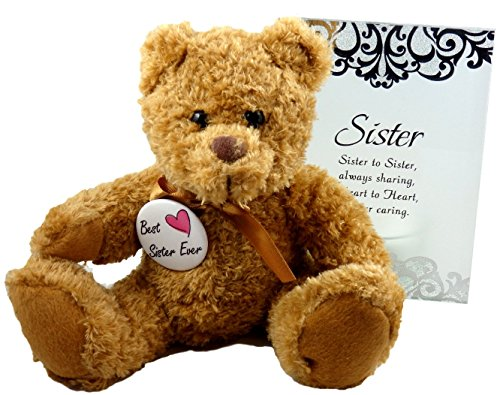 Best Sister Ever Gift - Perfect Gifts for In Law Sorority Sis from Sister or Brother for Birthday Christmas Thank You Christian - Teddy Bear Glass Plaque and - Thank You Keychains Wedding