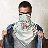 Neck Gaiter Balaclava Breathable Face Mask