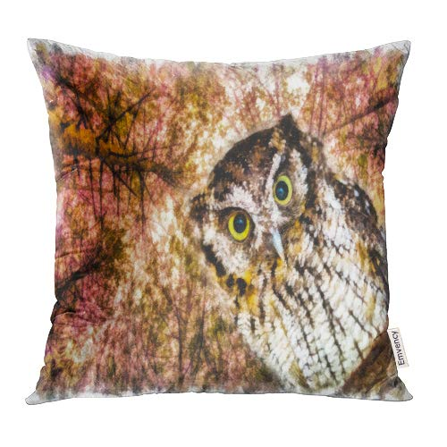Emvency Decorative Throw Pillow Covers Cases Brown Animal Beautiful Painting of Owl Eyes Drawing for Download Digital Avian Beak 20x20 Inch Case Cover Cushion Two Sided ()