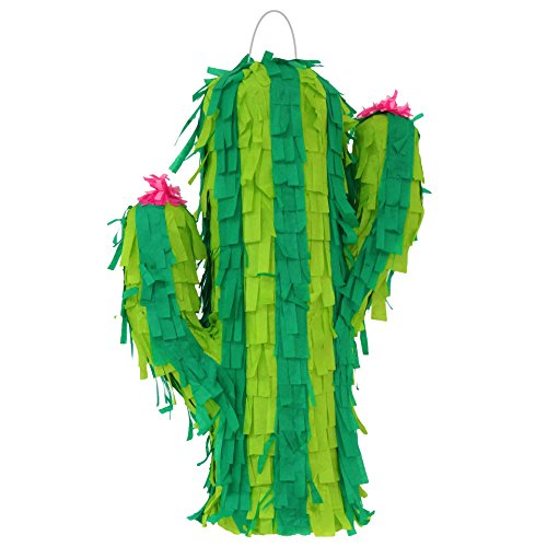 Cactus Pinata (1) ()