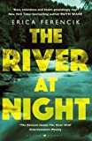 The River at Night: A Gripping Summer Thriller
