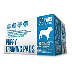 Bulldogology Puppy Pee Pads with Adhesive Sticky Tape - Large Dog Training Premium Wee Pads (24x24) 6 Layers with Extra Quick Dry Bullsorbent Polymer Tech (100-Count)
