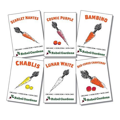 (Rebel Gardens Heirloom Carrot Seeds - 6 Varieties of Organic Non GMO Carrots for Planting)