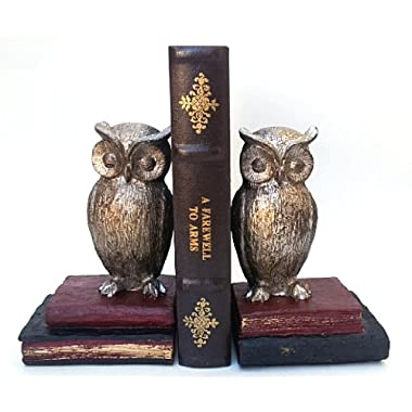 Bombayjewel Wide Eyed Owl Bookend Pair
