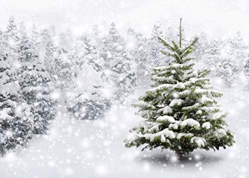 LYWYGG 7x5FT White Accumulated Snow Backdrops Christmas Studio Photography Backdrop Snowflake Blue Sky Winter Forest for Background cp-94