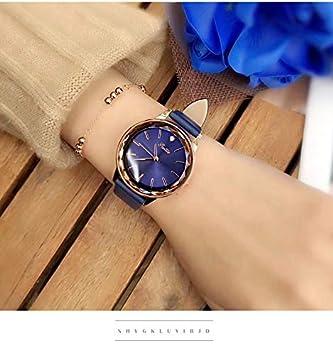 LKTGBRCVZJU Relojes Marea Reloj de Mujer a Prueba de Agua Mujeres de Moda 2018 niñas Reloj Estudiante Marea Femenino Simple y Generoso Retro, Oro Rosa Azul: ...