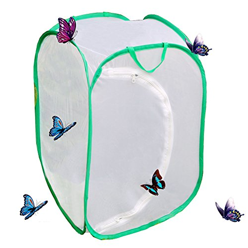 Qingo Collapsible Insect and Butterfly Habitat cage Terrarium Pop up open - 23.6 Inches Tall (White) (White)