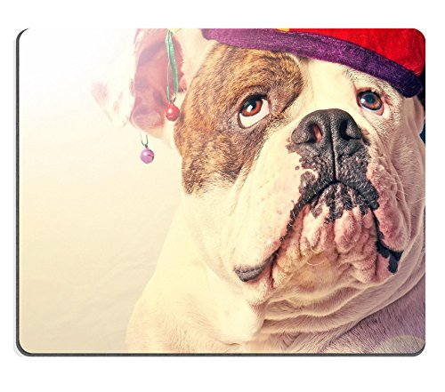 Liili Mouse Pad Natural Rubber Mousepad IMAGE ID 32918453 beautiful amrican bulldog in a cap close up