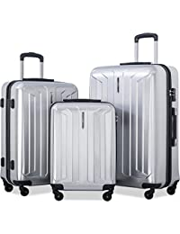 Flieks 3 Piece Luggage Set Eco-friendly Spinner Suitcase with TSA Lock (Silver)