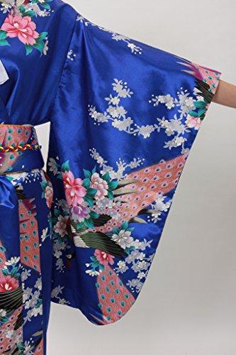 Smile YKK klassisch Japanisch Kleid Kostüm Kimono komonos Indigoblau