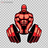 Sticker Tough Muscle Gym Training Exercise With Dumbbells Durable Boat D217 2674C