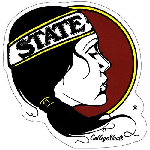 WinCraft Small College Vault Lady Seminole Head - State Stocking Florida Christmas Seminoles