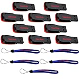 SanDisk Cruzer Blade 16GB (10 pack) USB 2.0 Flash Drive Jump Drive Pen Drive SDCZ50-016G - Ten Pack w/ (5) Everything But Stromboli (TM) Lanyards
