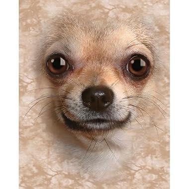 Chihuahua Dog Breed Fleece Throw Blanket by LTD