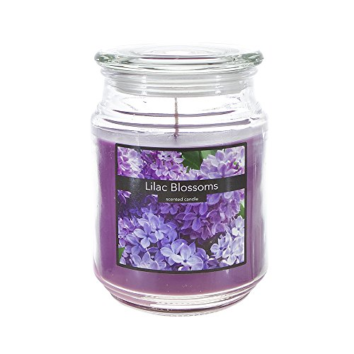 Scented 18 ounce Glass Jar Container Candle - Lilac (Lilac Scented Candles)
