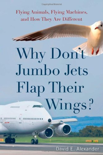 Dont Jumbo Jets Their Wings product image