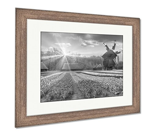 Fields of Tulips in Village, Wall Art Home Decoration, Black/White, 30x35 (Frame Size), Rustic Barn Wood Frame, AG5997697 ()