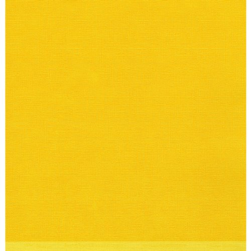 Dinations Cardstock (Darice 120920 Core ft. dinations Vintage Cardstock 12 in. x 12 in. -Lemonade)