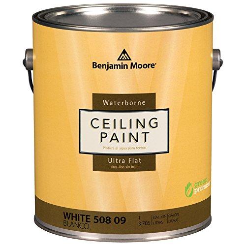Benjamin Moore Ultra Premium Waterborne Ceiling Paint (White)