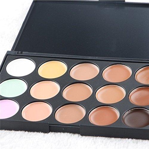 AWEPOL Concealer Palette Mini 15 Colors Face Concealer makeup Concealer Camouflage Cream Contour Palette (10X8X1CM, 1)
