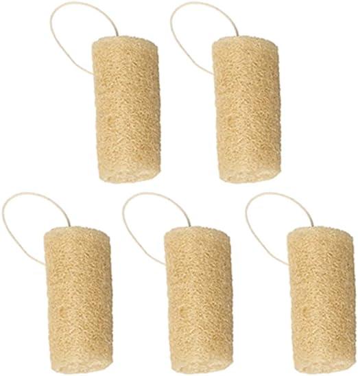 FSGD 5 Paquete Naturales para Lavar vajilla, Esponjas de Cocina ...