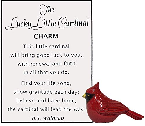 - Ganz Lucky Little Cardinal Pocket Charm with Story Card,One Size