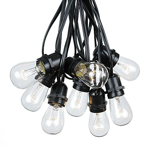 100 Foot S14 Edison Outdoor String Lights - Commercial Grade String Lights - Backyard Garden Gazebo – Cafe Market Light Set – Vintage Patio String Lights - Black Wire - 50 Clear S14 Bulbs by Novelty Lights
