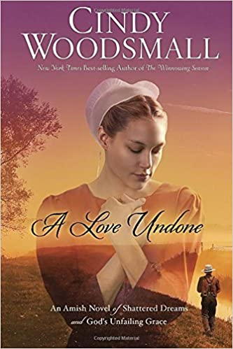In the Blink of an Eye: An Amish Romance