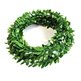 Kyson 2 Pack Artificial Greenery Ivy Vine Plants Fake Accessory Foliage Garland Leaves for Headwear Home Garden Wedding Decoration DIY