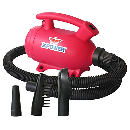 XPOWER B-55 2-in-1 Home Force Air Pet Dryer and Vacuum
