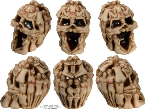 Human Female Anatomy Skull Replica By Nose Desserts Brand
