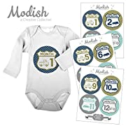 Modish - Creative Collective 12 Monthly Baby Stickers, Retro Cars Baby Month Stickers, Uptown Traffic Nursery Decor, Baby Belly Stickers, Baby Month Stickers Boy, Baby Book Keepsake