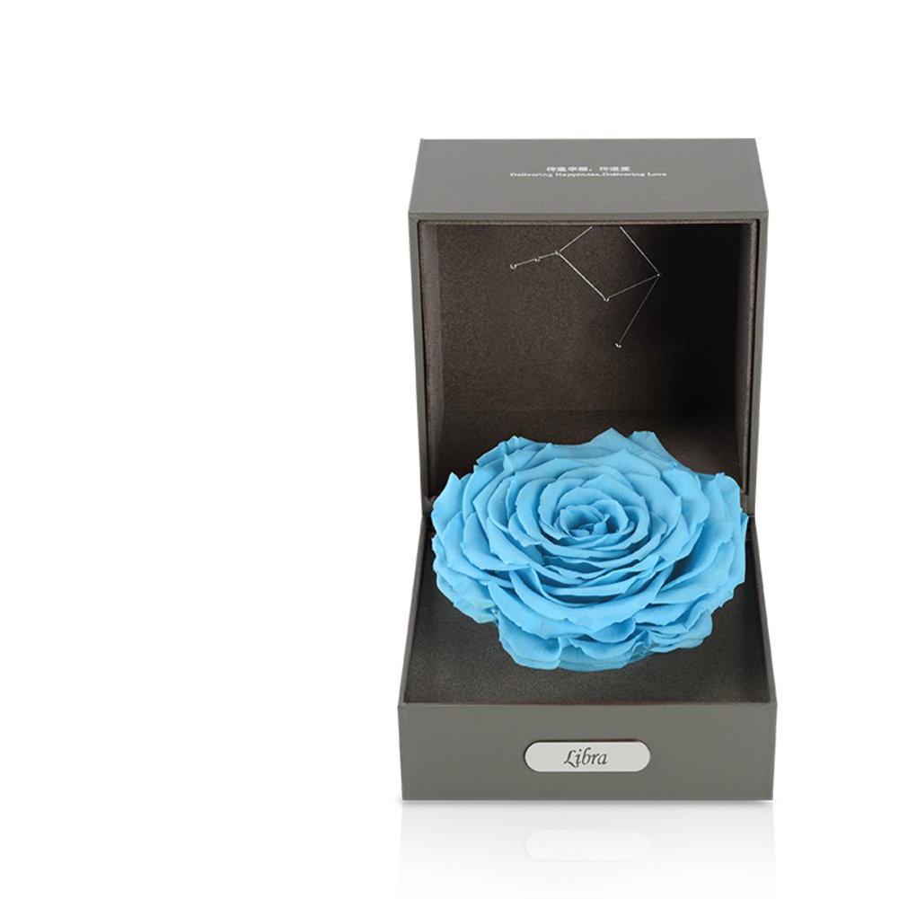 Imported Live Flower Gift Box/Fresh Colorful Roses/ Birthday Gift For Mother's Day-E